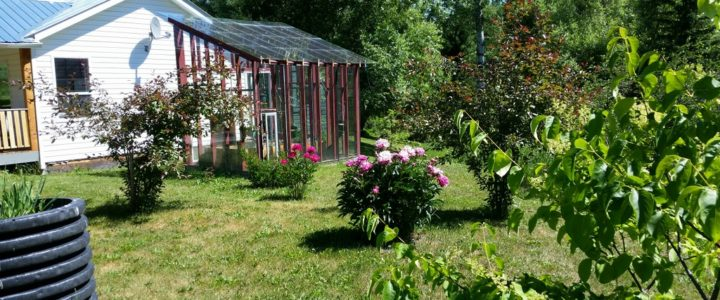 Hobby Farm on 4.33 acres with Creek near Horsefly Lake - 6394 Millar Road, Horsefly BC