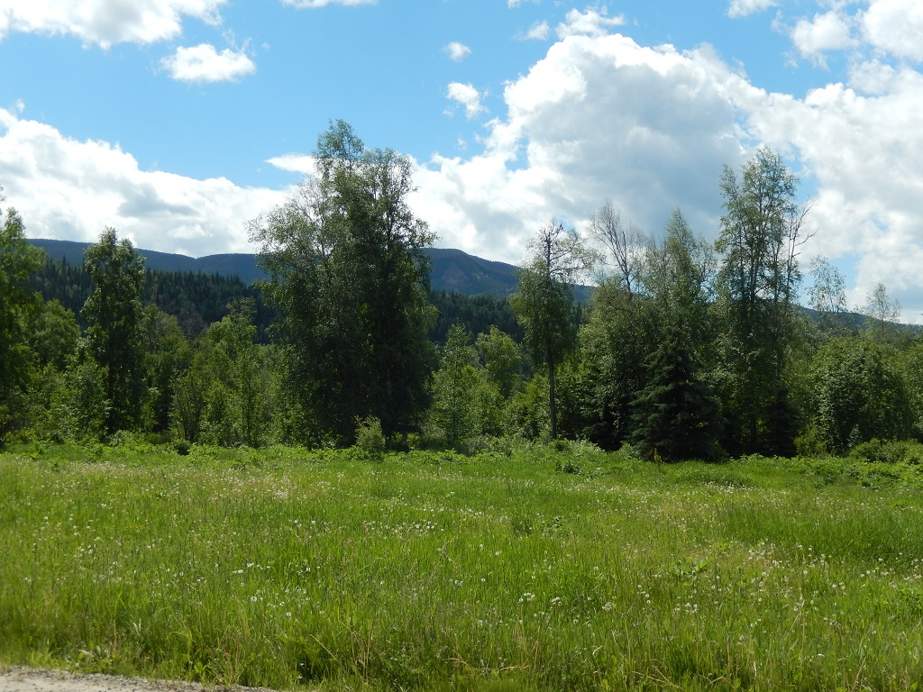 51 Acre Property with 1300' Waterfront on Horsefly River - # DL 9829 Black Creek Road, Horsefly BC