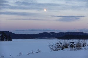 January moon rising