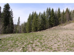 21 acre Lot with Lovely View - Lot 5 Little Lake Road, Likely BC